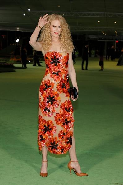 Лапочка: Николь Кидман в абсолютно прозрачном платье Rodarte с огромными маками